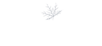 MapleSage-New-logo-without tagline-1-1